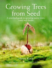 Growing Trees From Seed