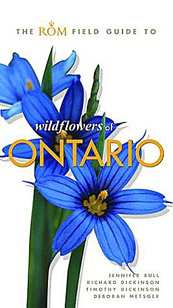 Wildflowers Of Ontario