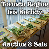 The Toronto Region Iris Society Auction and Sale