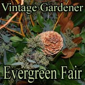 The Evergreen Fair