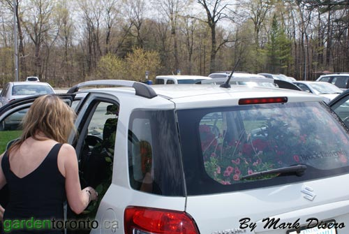 Car Packed with plants