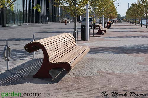 Benches east of Sugar Beach