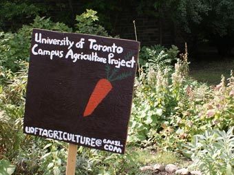 The University of Toronto Campus Agriculture Project